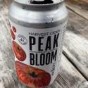 Picture of Harvest cider peak bloom