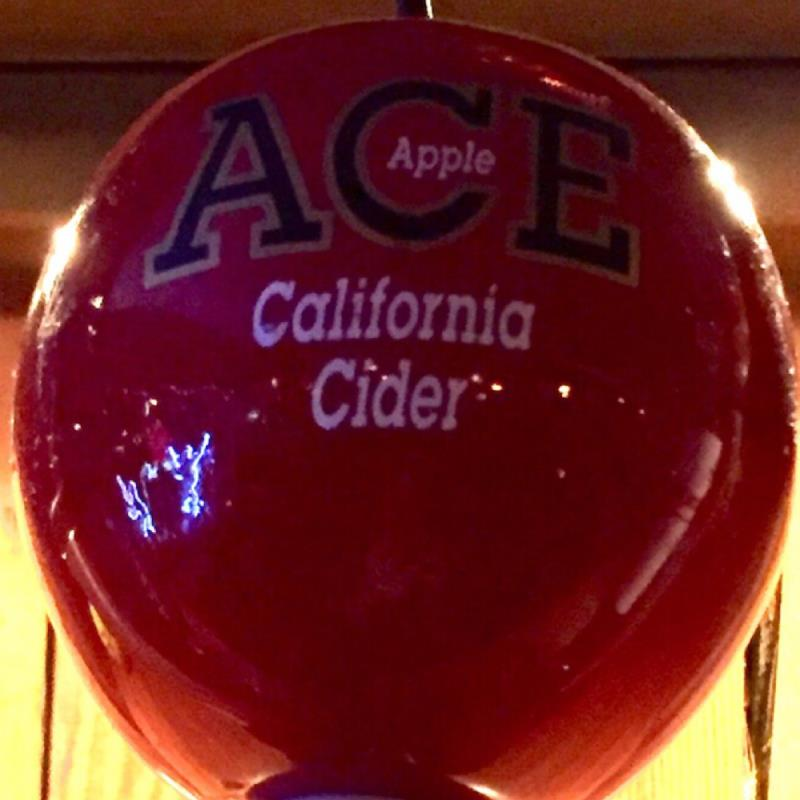 picture of ACE Hard Ciders Ace Apple Hard Cider submitted by herharmony23