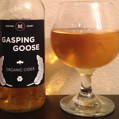 picture of Newton Court Gasping Goose submitted by cidersays