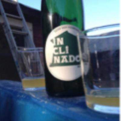 picture of Tilted Shed Ciderworks Inclinado Sidra Natural submitted by Baptiste