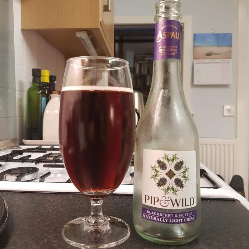 picture of Aspall Pip & Wild - BlackBerry & Nettle submitted by BushWalker