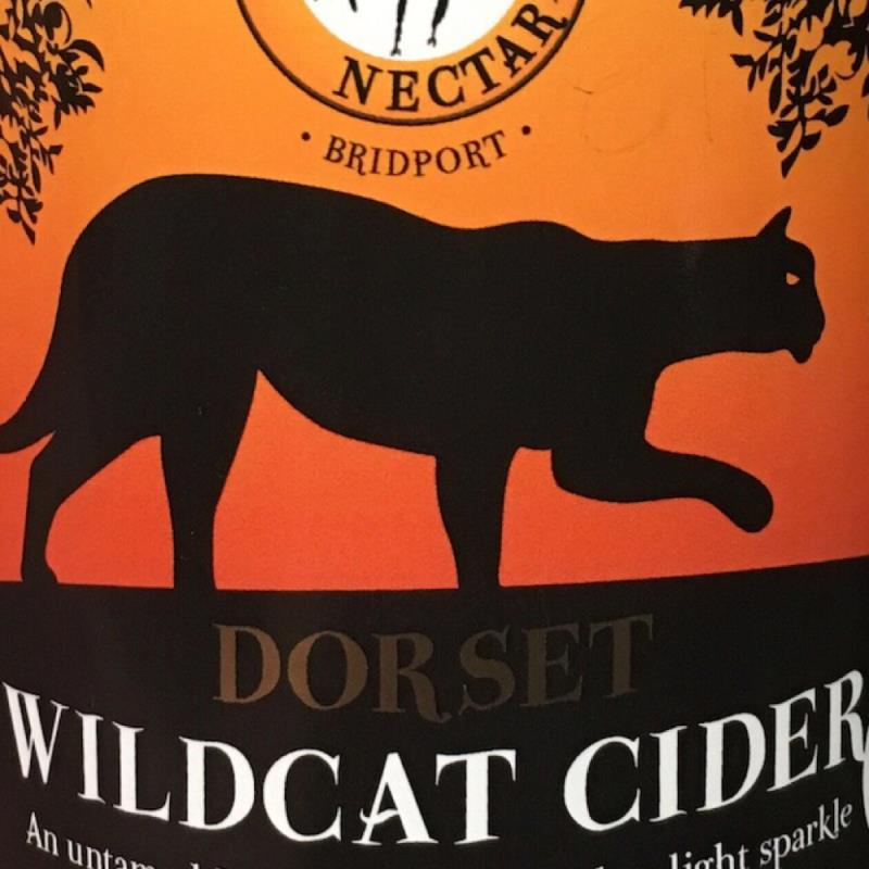 picture of Dorset nectar Wildcat Cider submitted by Fegrig